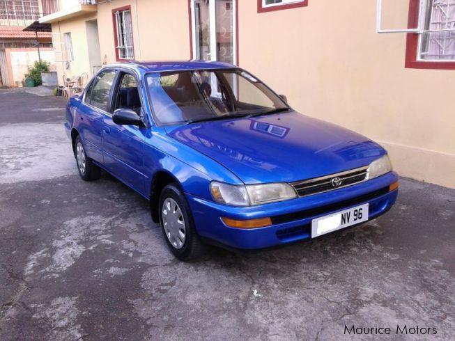 used toyota corolla ee100 1996 corolla ee100 for sale riviere du rh mauricemotors mu toyota corolla e100 manual 2014 Toyota Corolla