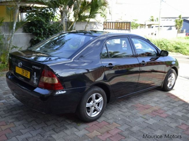 used toyota corolla lx nze 2002 corolla lx nze for sale pointe aux sables toyota corolla lx. Black Bedroom Furniture Sets. Home Design Ideas
