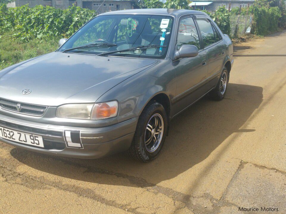 used toyota corolla 1995 corolla for sale nouvelle france toyota corolla sales toyota. Black Bedroom Furniture Sets. Home Design Ideas