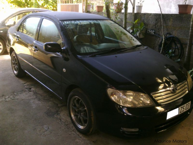 used toyota corolla nze 2003 corolla nze for sale quatre bornes toyota corolla nze sales. Black Bedroom Furniture Sets. Home Design Ideas