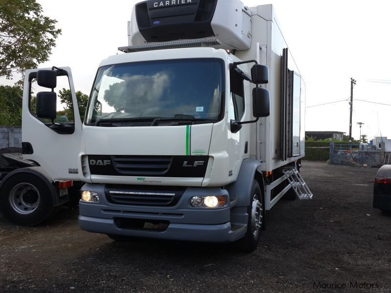 Used DAF LF 55.220 fridge truck for sale in Mauritius