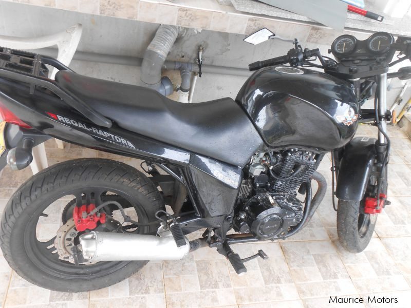 Used Regal Raptor DD125 for sale in Mauritius
