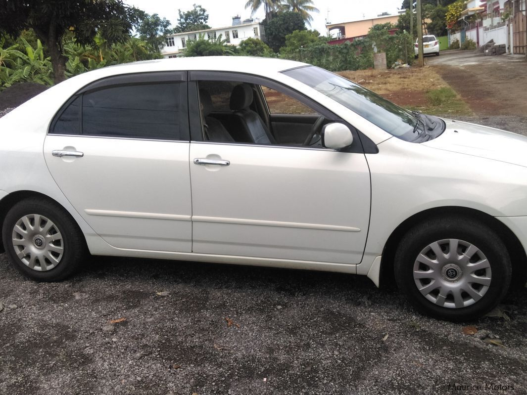 Pre-owned Toyota Corolla NZE grade G for sale in