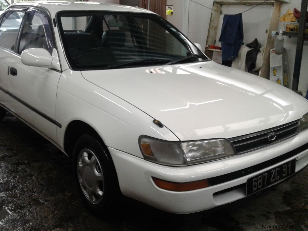 Pre-owned Toyota Corrolla E101 for sale in