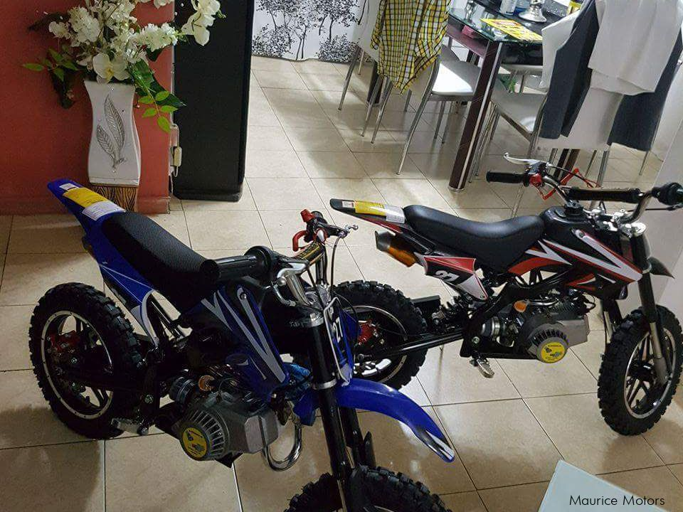 Pre-owned Easy Rider Trail for sale in