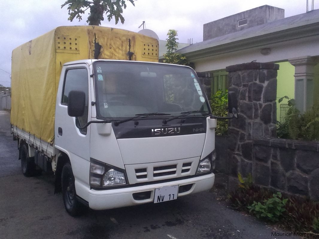 Used Isuzu NHR 55-Call on 57596664 for sale in