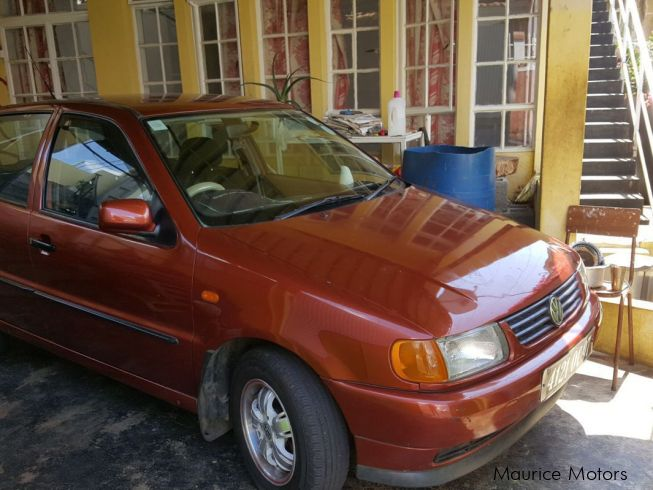 Volkswagen Polo in Mauritius